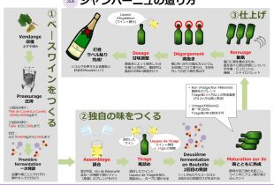 【2019JSA】シャンパーニュ Champagne
