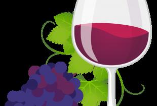 【募集】フレンチ系のモロッコ料理でワイン会