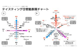 【2020年】テイスティング(座学)|ソムリエ・ワインエキスパート試験