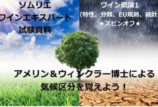 【2020年】アメリン&ウィンクラー博士による気候区分を覚えよう!|ソムリエ・ワインエキスパート試験