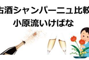 【2020/2/28開始】シャンパーニュ古酒比較と小原流いけばな