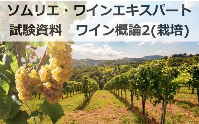 【2021年】ワイン概論2(ブドウ栽培)|ソムリエ・ワインエキスパート試験