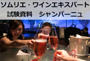 【2019年】シャンパーニュ Champagne