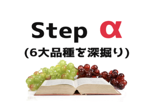 【2021年11月開講】Stepアルファ|ADV講座案内